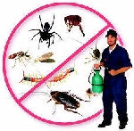 Pest control solution services ranchi jharkhand patna bihar